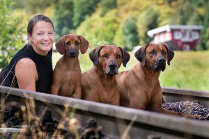 Stefanie Radke mit ihren drei Rhodesian Ridgeback Rüden BamBam, Hellboy und Highlander; Foto: M. Biene
